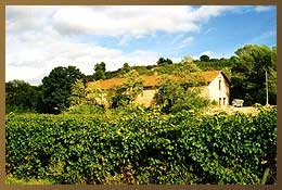 The Domaine des Lauriers at Castelnau de Guers (Hérault)